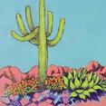 Sonoran Dreams Landscape LLC's profile photo