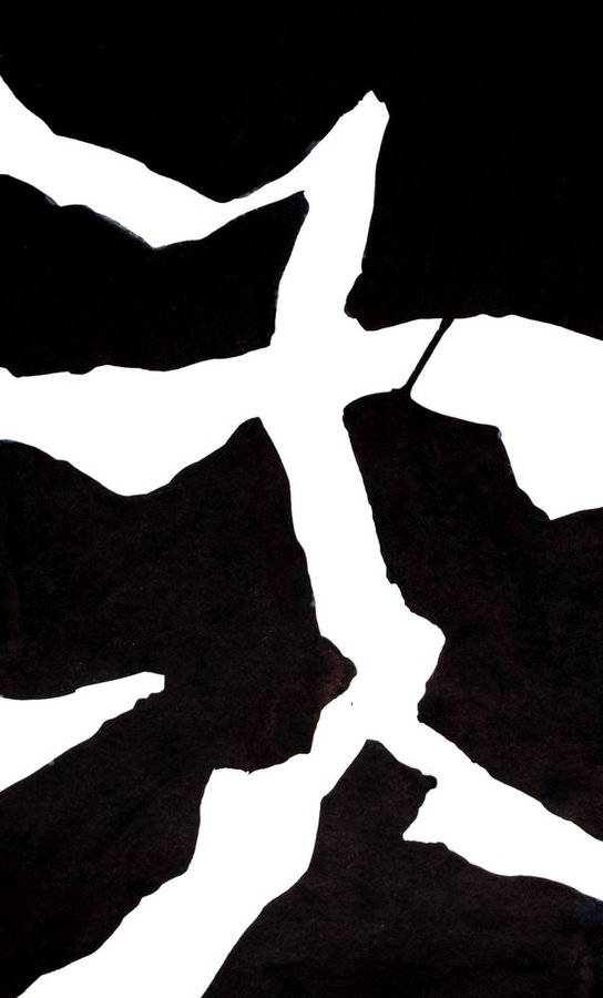 Картина. TANYA  FIRN  Black & White 2