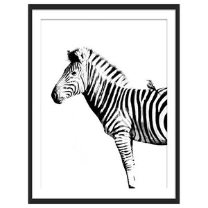 """Zebra Stripes"" Animal Art Print, Black Framed, 40x50 cm"