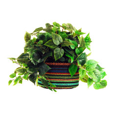 Pothos Greenery, Multi Colored Fabric Container