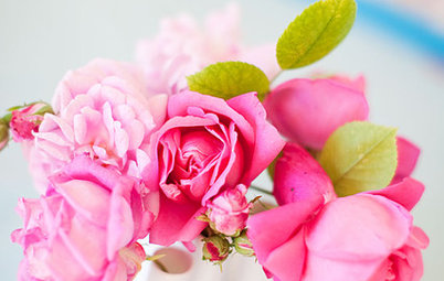 Simple Pleasures: Treat Yourself to Cut Flowers