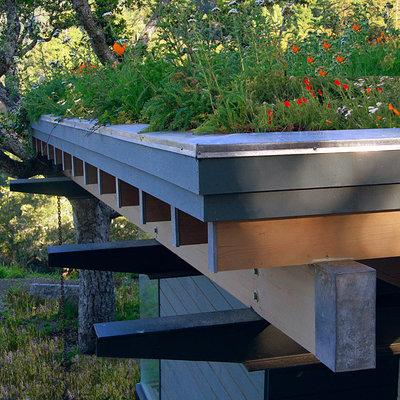 Modern  by Feldman Architecture, Inc.