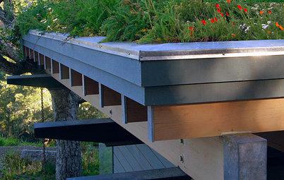 Installer une toiture végétalisée, mode d'emploi