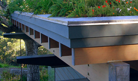 How to Install a Green Roof