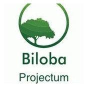 Foto de Biloba Projectum Constructora