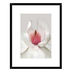 """""""Magnolia"""" Artwork, 17""""x22"""""""