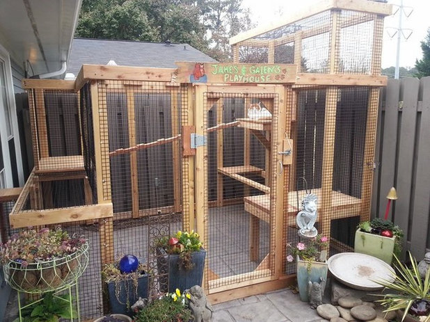 How To Get Your Catio On