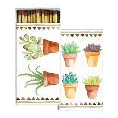 Colorful Succulent Cactus Plant Matches, Set of 10 Botanical Potted