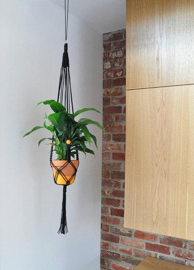 How To Make A Macrame Plant Hanger Houzz