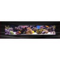 Aussie Aquariums 2.0 Wall Mounted Aquarium - Panoramic - Brushed Black