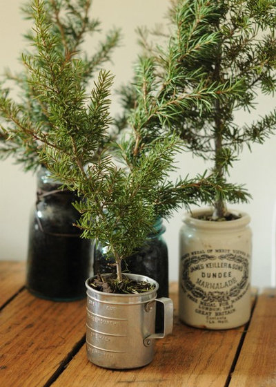 Eklektisk Vardagsrum Christmas tree in a pot