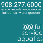 Full Service Aquatics LLC.'s photo
