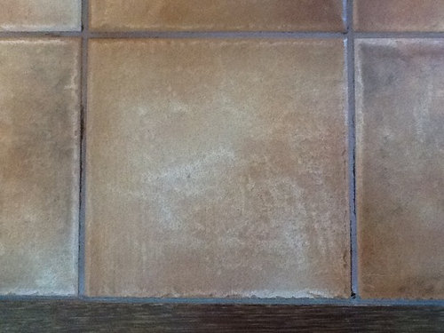 Floor Grout Turning To Powder