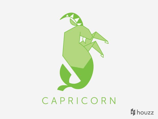 Designing With the Stars: Capricorn