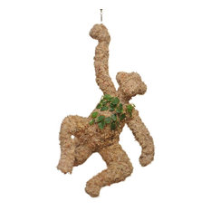Hanging Monkey Planted Topiary