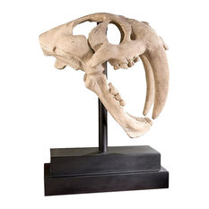 Saber Tooth Tiger Skull Decor