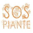 Foto di profilo di SOS Piante