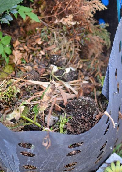 Kompost Anlegen Richtig Pflegen Und Dann Als Hochbeet Nutzen