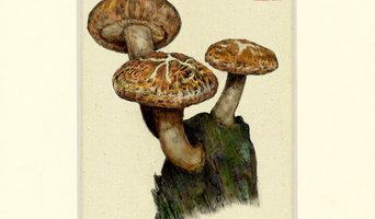 Shiitake Mushroom Print, 8 X 10