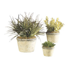 Constance Lael-Linyard La Costa Greenery Botanicals, Set of 3