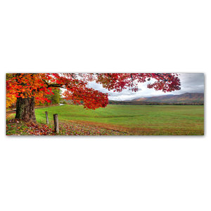6in. x 6in. Maple Leaf Painting Gallery Wrapped Canvas Art Brushes Health & Personal Care