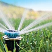 Winnipesaukee Irrigation's photo