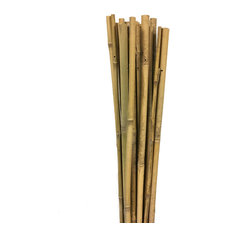 """Bamboo Stakes 60"""", 10 Piece Bundle"""