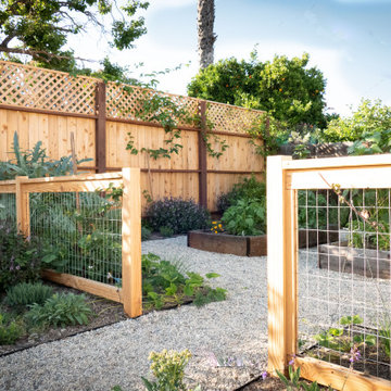 Contemporary Food Forest