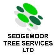 Sedgemoor Tree Surgeons Ltd's photo