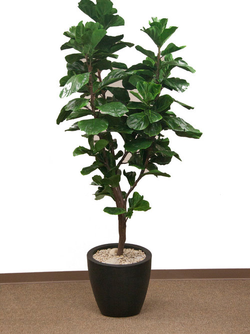 IFR Indoor Artificial Trees and Plants
