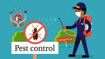 Pest Control Drummoyne