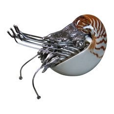 """Chambered Nautilus with Shell 7.5""""x2.5""""x2"""""""