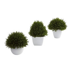 Mixed Cedar Topiary Collection, Set of 3
