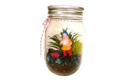Make Your Own Terrarium Kit, Gnome