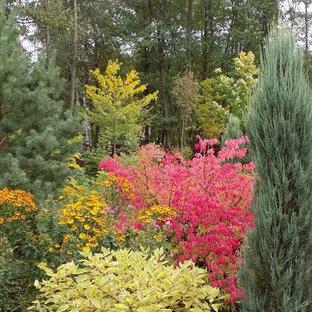 Озеленение, ландшафтный дизайн