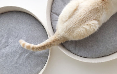 Pet's Place: She Couldn't Find a Perfect Cat Bed, so She Made One