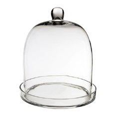 CYS Excel Glass Dome Cloche Terrarium Bell Jar with Glass Tray