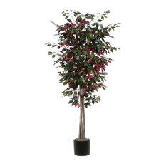 Capensia Deluxe Tree, 6'