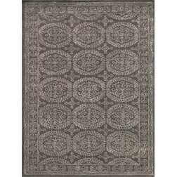 Transitional Area Rugs by Amer Rugs Inc.