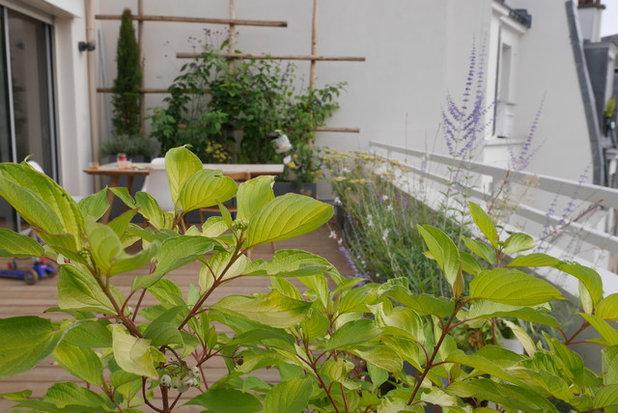 Moderne Terrasse en Bois by Kevin Clare - Paysagiste