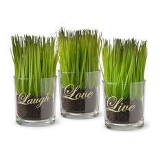 3-Piece Sprout-Filled Small Glass Cups
