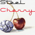 Steel Cherry Metal Works's profile photo
