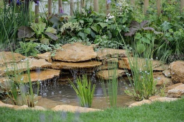 by Claudia De Yong Garden Design