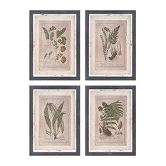 IMAX Corporation Botanical 4 Piece Print Wall Decor Set