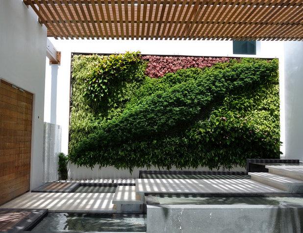 Giardino verticale come crearlo in 7 facili passi - Prato verticale per interni ...