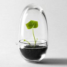 - Grow Miniväxthus - Växthus