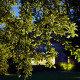 Iconlux - Landscape Lighting