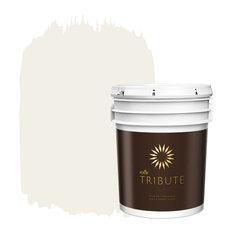 Kilz Brands Tb 08 5 Gal Architectural White Interior Paint