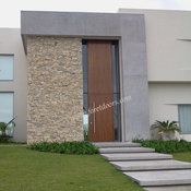 Contemporary houses -modern front doors by Foret Doors