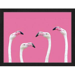"""Flamingo Club"" Framed Photo Print, 35x45 cm"